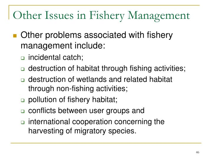 Other Issues in Fishery Management