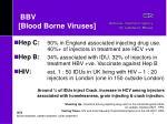 bbv blood borne viruses