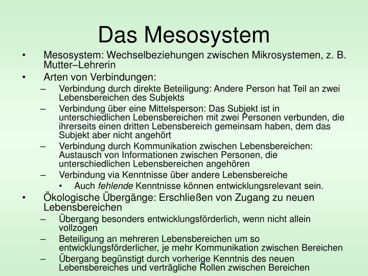 Das Mesosystem