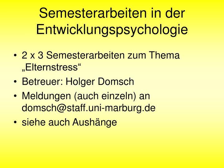 Semesterarbeiten in der Entwicklungspsychologie