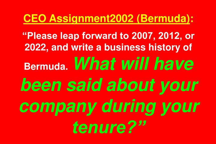 CEO Assignment2002 (Bermuda)