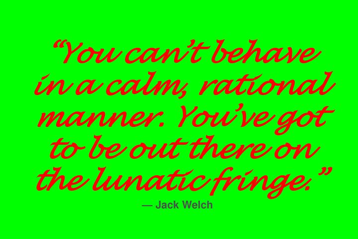 """You can't behave in a calm, rational manner. You've got to be out there on the lunatic fringe."""
