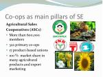co ops as main pillars of se1