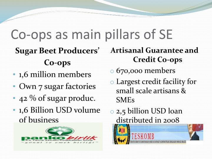 Co-ops as main pillars of SE