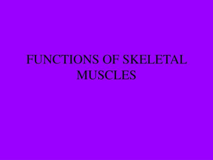 FUNCTIONS OF SKELETAL MUSCLES