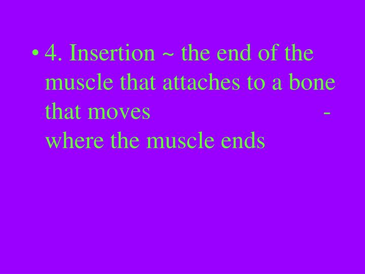 4. Insertion ~ the end of the muscle that attaches to a bone that moves-where the muscle ends