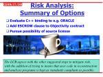 risk analysis summary of options