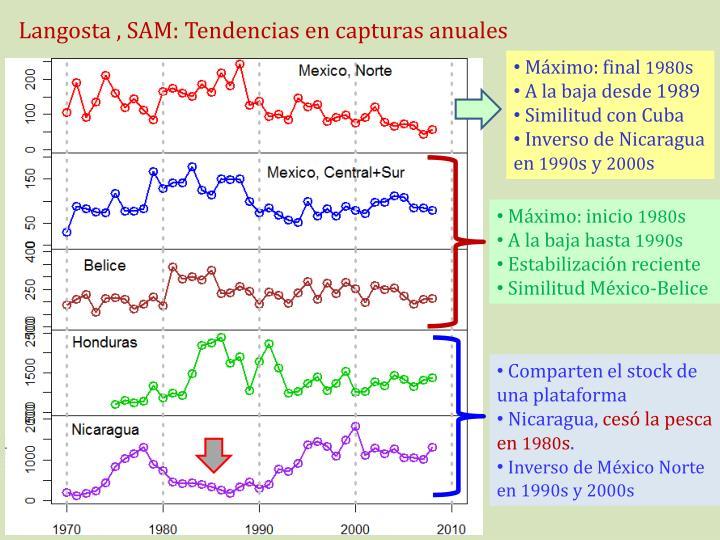 Langosta , SAM: Tendencias en capturas anuales