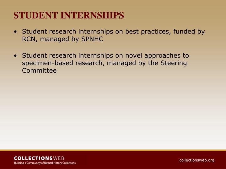 STUDENT INTERNSHIPS