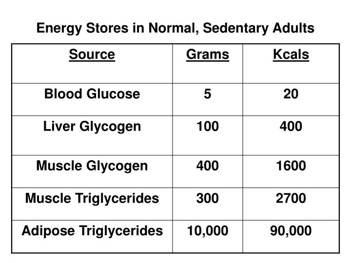 Energy Stores in Normal, Sedentary Adults