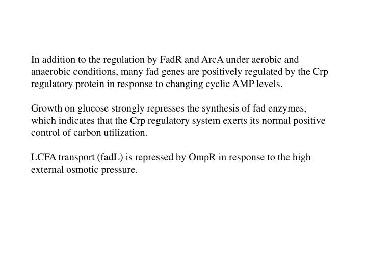 In addition to the regulation by FadR and ArcA under aerobic