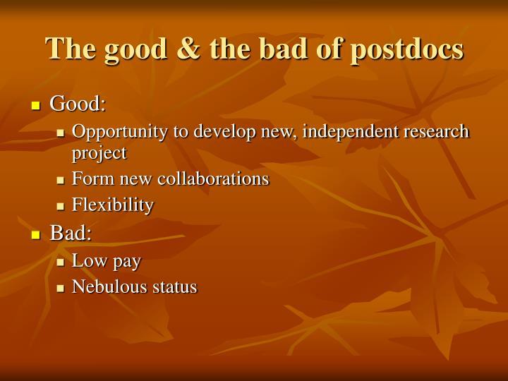 The good & the bad of postdocs