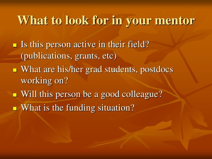 What to look for in your mentor