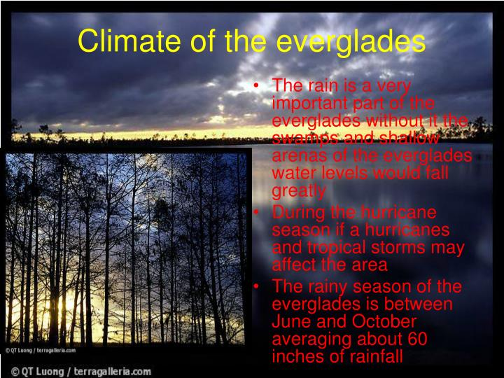 Climate of the everglades