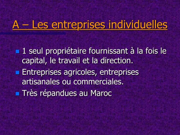 A – Les entreprises individuelles