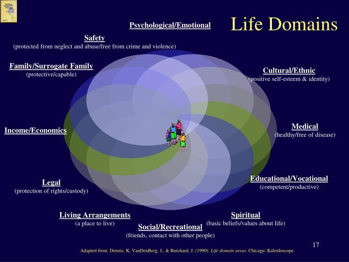 Life Domains