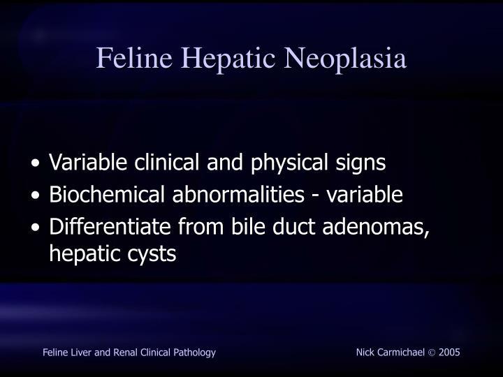 Feline Hepatic Neoplasia