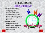 vital signs heartbeat