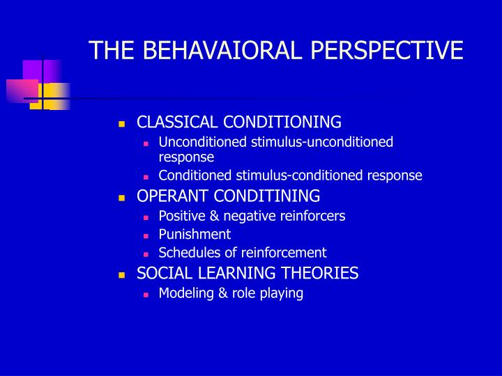 THE BEHAVAIORAL PERSPECTIVE