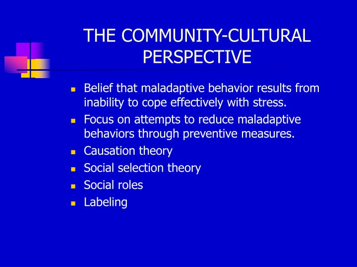 THE COMMUNITY-CULTURAL PERSPECTIVE