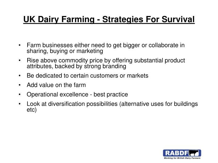 UK Dairy Farming - Strategies For Survival