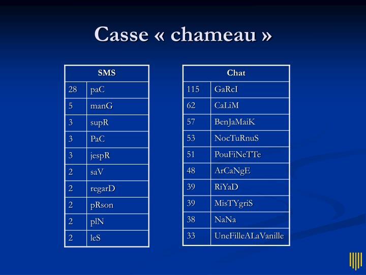 Casse « chameau »