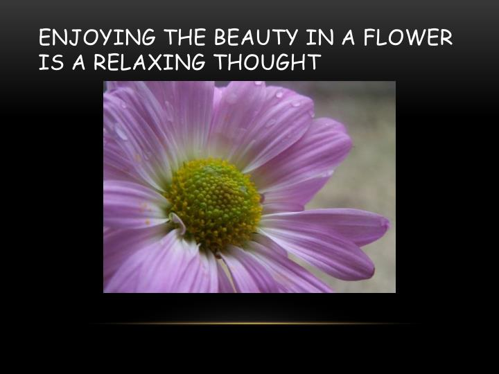 Enjoying the beauty in a flower is a relaxing thought