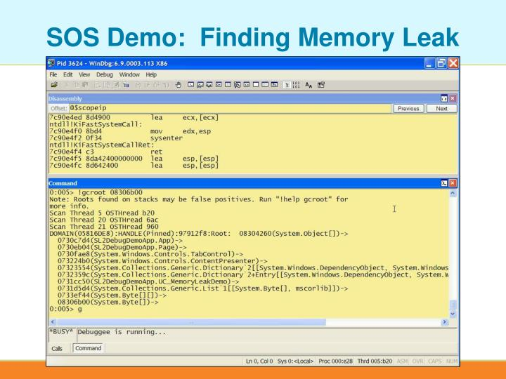 SOS Demo:  Finding Memory Leak