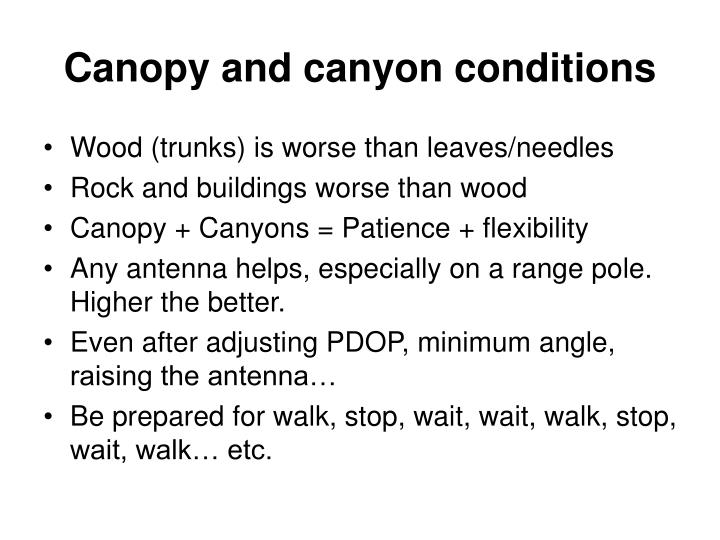Canopy and canyon conditions