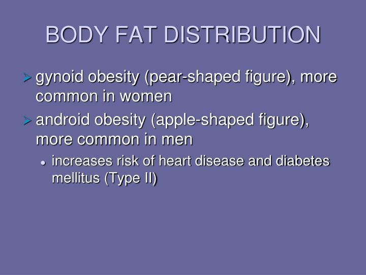 BODY FAT DISTRIBUTION