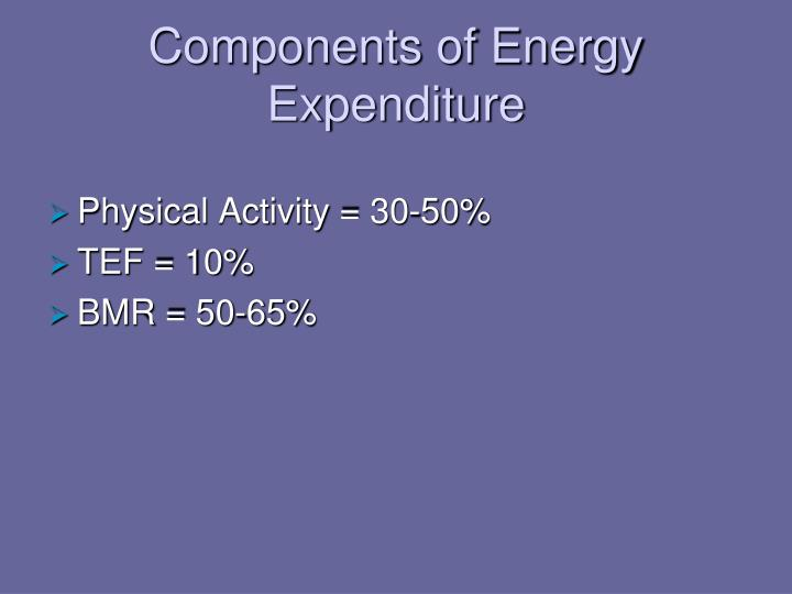 Components of Energy Expenditure