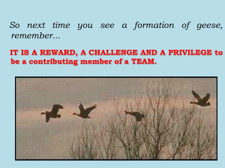 So next time you see a formation of geese, remember...