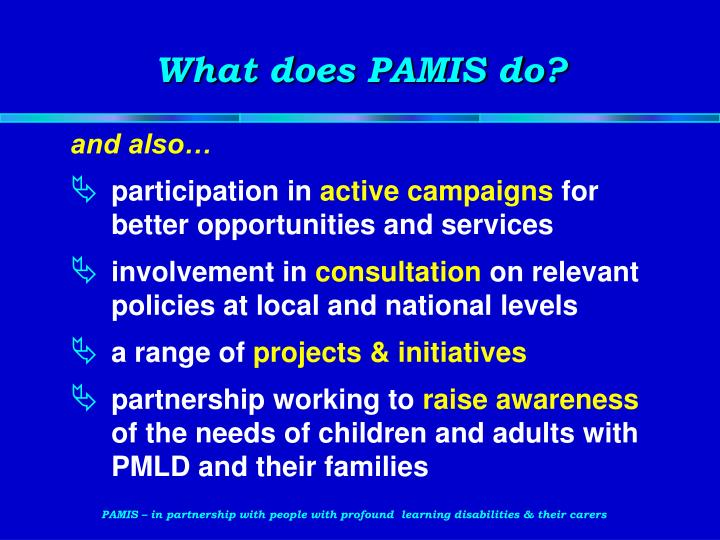 What does PAMIS do?