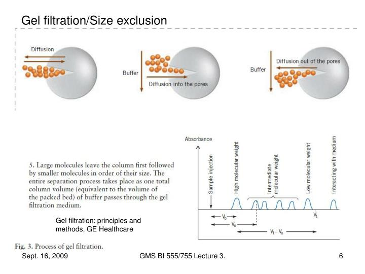 Gel filtration/Size exclusion