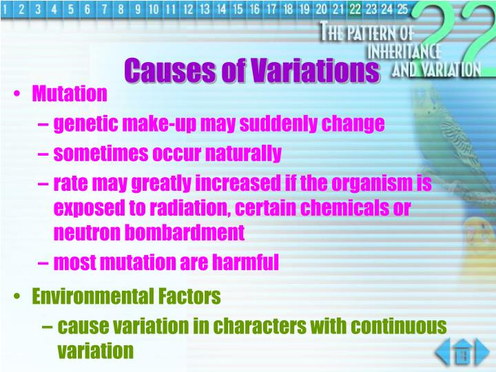 Causes of Variations