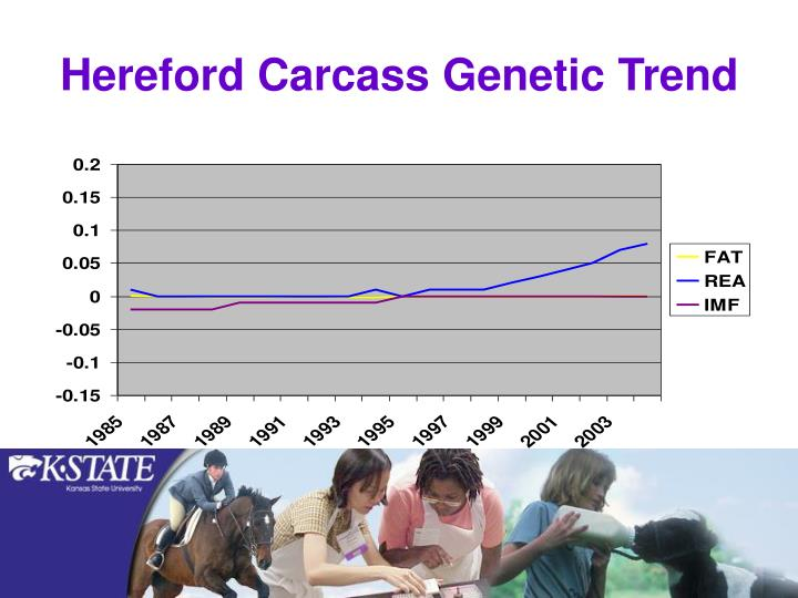 Hereford Carcass Genetic Trend