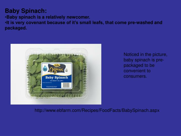 Baby Spinach: