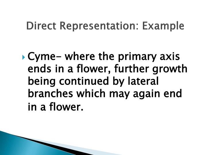Direct Representation: Example