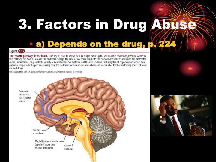 3. Factors in Drug Abuse