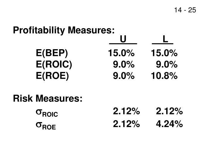 Profitability Measures:
