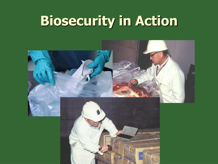 Biosecurity in Action