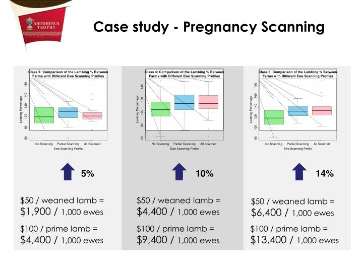 Case study - Pregnancy Scanning