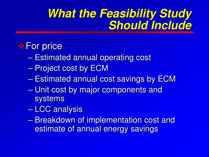 What the Feasibility Study Should Include