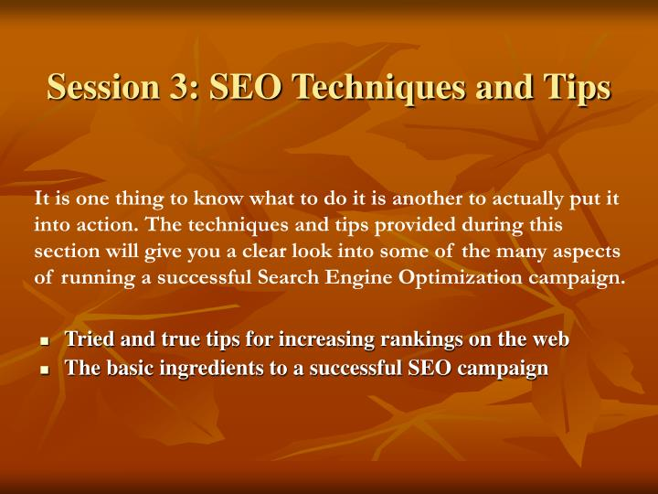 Session 3: SEO Techniques and Tips