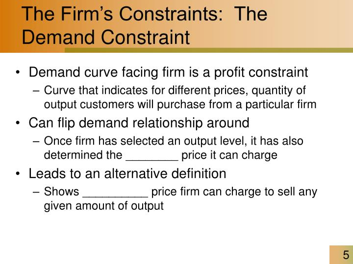 The Firm's Constraints:  The Demand Constraint