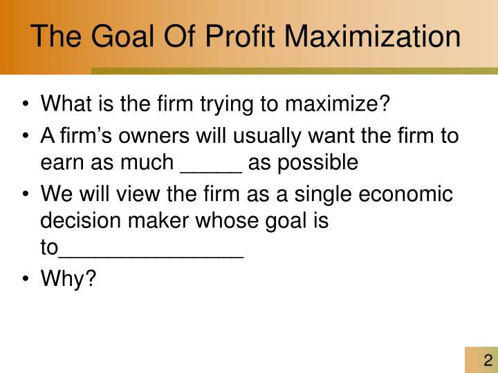 The Goal Of Profit Maximization