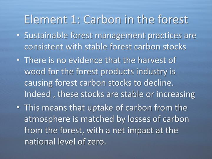 Element 1: Carbon in the forest