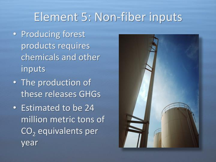 Element 5: Non-fiber inputs