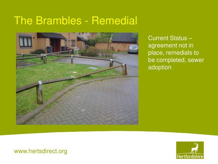 The Brambles - Remedial