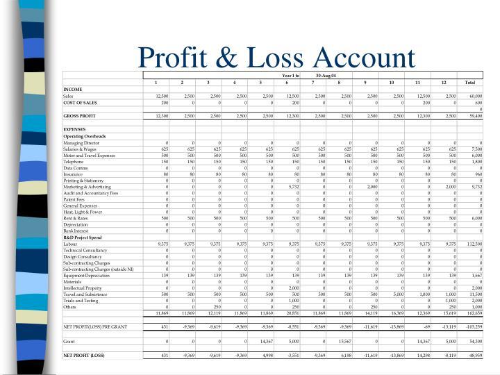 Profit & Loss Account